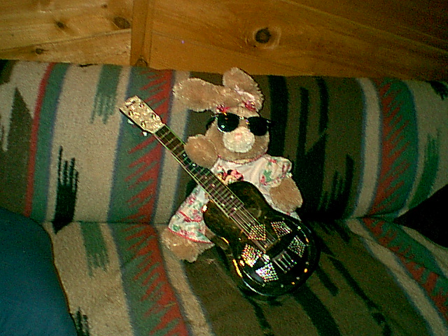 Abi's Strawberry Bear with sunglasses and my national uke